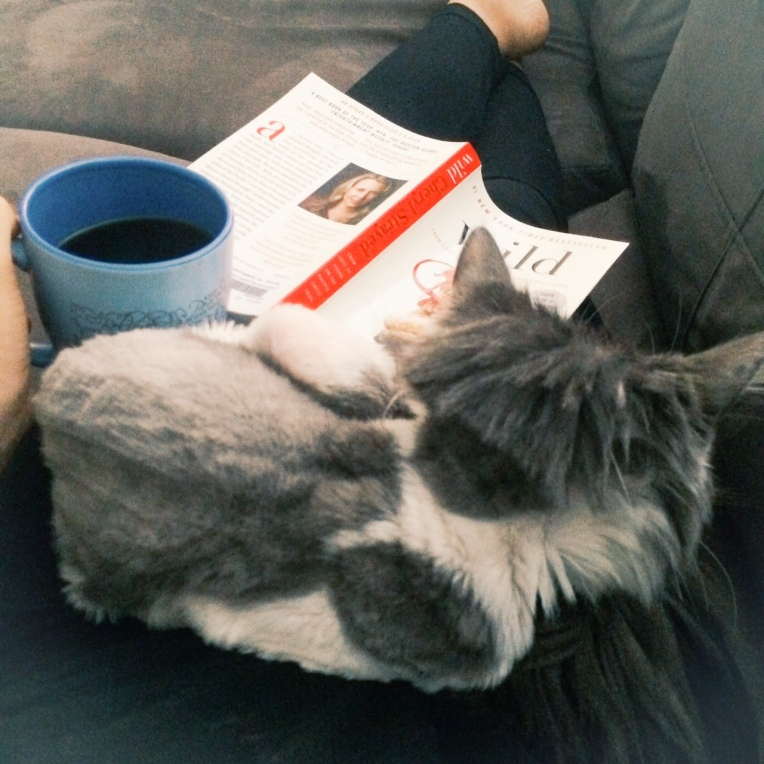 Reading a book with coffee and my cat