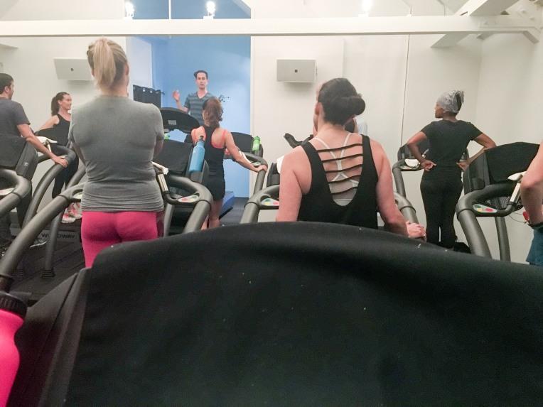 thoroughbred-treadmill-studio